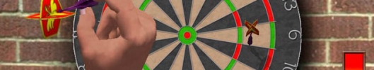 3D Darts Professional