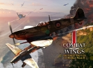 Náhled k programu Combat Wings: The Great Battles of WWII