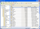 Náhled k programu ExplorerXP
