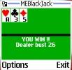Náhled k programu MEBlackJack
