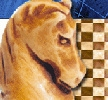 Náhled programu Mobile Chess. Download Mobile Chess