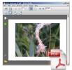Náhled k programu PhotoPDF