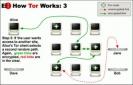 Náhled k programu Tor