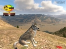Náhled programu WolfQuest. Download WolfQuest