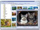 Náhled k programu FastStone Photo Resizer