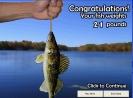 Náhled k programu Fishing Minnesota Lake Mille Lacs