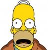Náhled k programu Homer Simpson