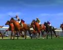 Náhled k programu Horse Racing Manager 2
