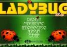 Náhled k programu LadyBug 2k6