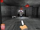 Náhled k programu Voxelstein 3D